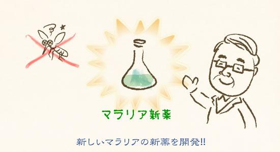 新しいマラリヤの新薬を開発